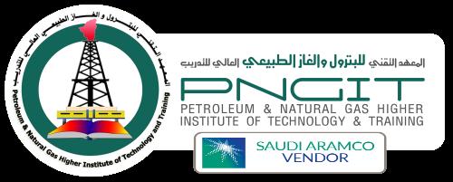 pngit logo